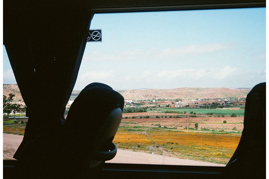 Green and tawny fields and a light blue sky as seen through a bus window, headrests and curtains silhouetted in the foreground