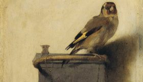 Annie-Plumier_The-Goldfinch_Thumb