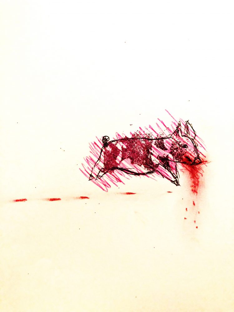 Line drawing of a pig running. Behind the pig are red spots. Pink dashes color the pig outside the lines. Red mark coming off of the moth and pink glitter patches on the body.