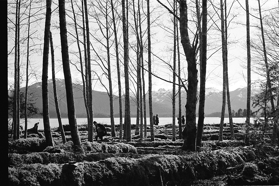 Black and white image of bare trees, people dispersed among them, water and mountains in background