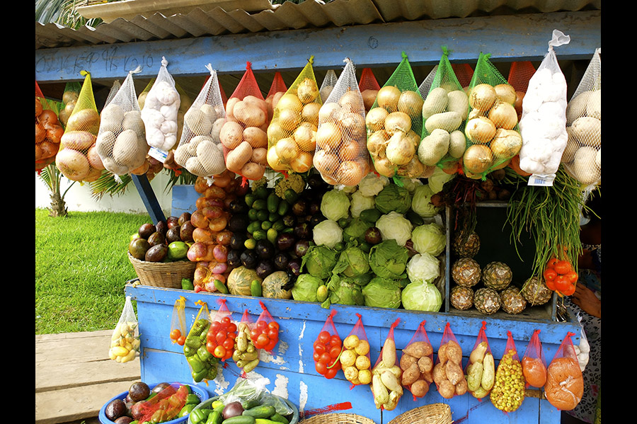 A colorful stand of vegetables, with some bagged veggies hanging.