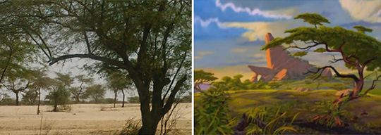 """Dakar plains compared to a still of Pride Rock from """"The Lion King"""""""