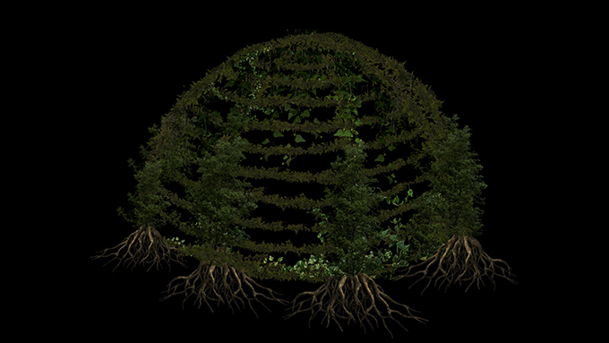 Dome is fully enveloped in plant life; arched and mature trees are trained against its structure, reaching from the base to its apex. Vines and other plant life wrap around the dome, and the roots of the trees extend towards the bottom of the image.