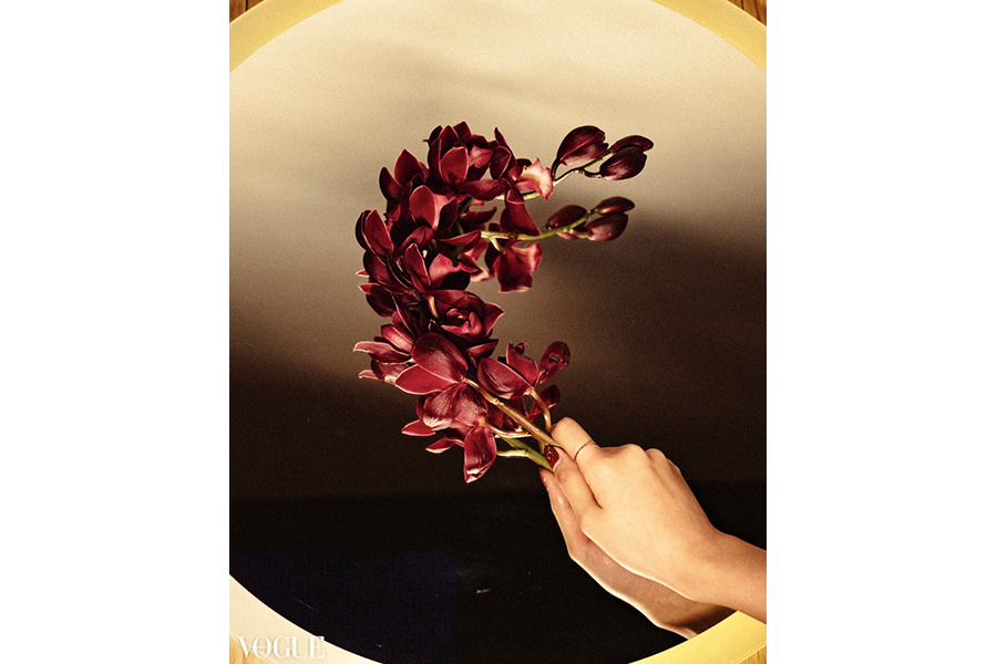A curved spray of deep purple-red orchids on a mirrored table, held by the stem, by a hand just at the bottom-right corner of the frame.
