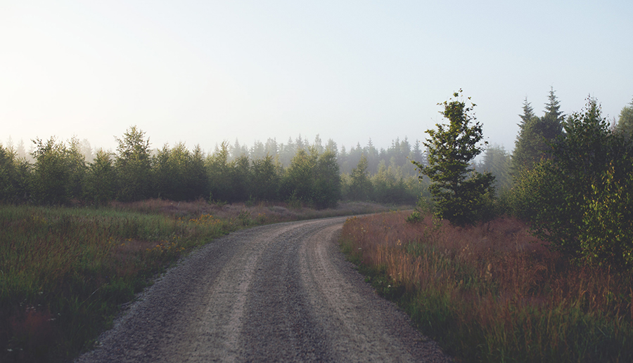 Photograph of a gravel road through the countryside